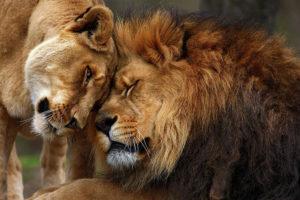 قصص حب قصيره معبره وجميلة بعنوان : لا تجعل الظاهر يخدعك