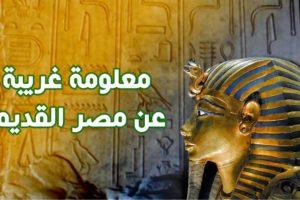 معلومات عن مصر القديمة حقائق تاريخية صادمة عن مصر الفرعونية