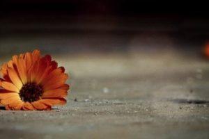 اشعار عراقية حزينة عن العتاب والخيانة والألم والفراق ارقي المشاعر والاحاسيس