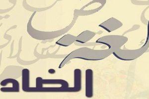شعر عربي فصيح واحة الشعر العربي اجمل قصائد المتنبي وعنترة