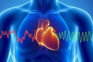 هل تعلم عن الانسان معلومات خطيرة ومفيدة جداً عن جسم الانسان