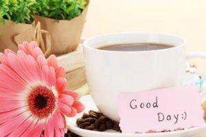 صباح الحب اجمل الكلمات والرسائل والعبارات الصباحية الرومانسية للحبيب