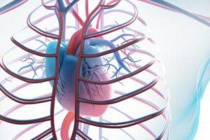 امراض القلب انواعها واسبابها ونصائح مهمة ومفيدة لتجنب الاصابة بها