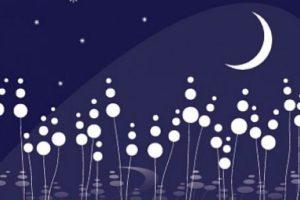 دعاء النوم والأرق وفوائده للمسلم والحكمة من دعاء قبل النوم من السنة النبوية