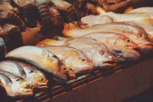 السمك في المنام كما ورد عن الامام ابن سيرين رؤية السمك أو صيد السمك او اكله في الحلم