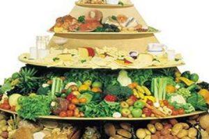 الهرم الغذائي تعريفه ومفهمومه ومجموعاته بشكل مفصل