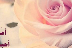 الأم قصائد شعر رائعة عن عظمة قلب الام وحنانها كلمات مؤثرة وجميلة