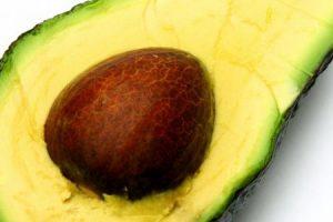 افوكادو تعرف علي فوائده وقيمته الغذائية العالية وطريقة اعداد عصير الأفوكادو