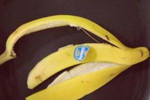 فوائد قشر الموز للبشرة والوجه وطريقة استخدامه بوصفات طبيعية مميزة