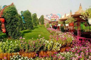 حديقة الفراشات في دبي تعرف علي محتواها ومعلومات رائعة عنها