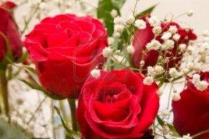 كلام في الحب والغزل ومقتطفات من اجمل قصائد نزار قباني الرومانسية