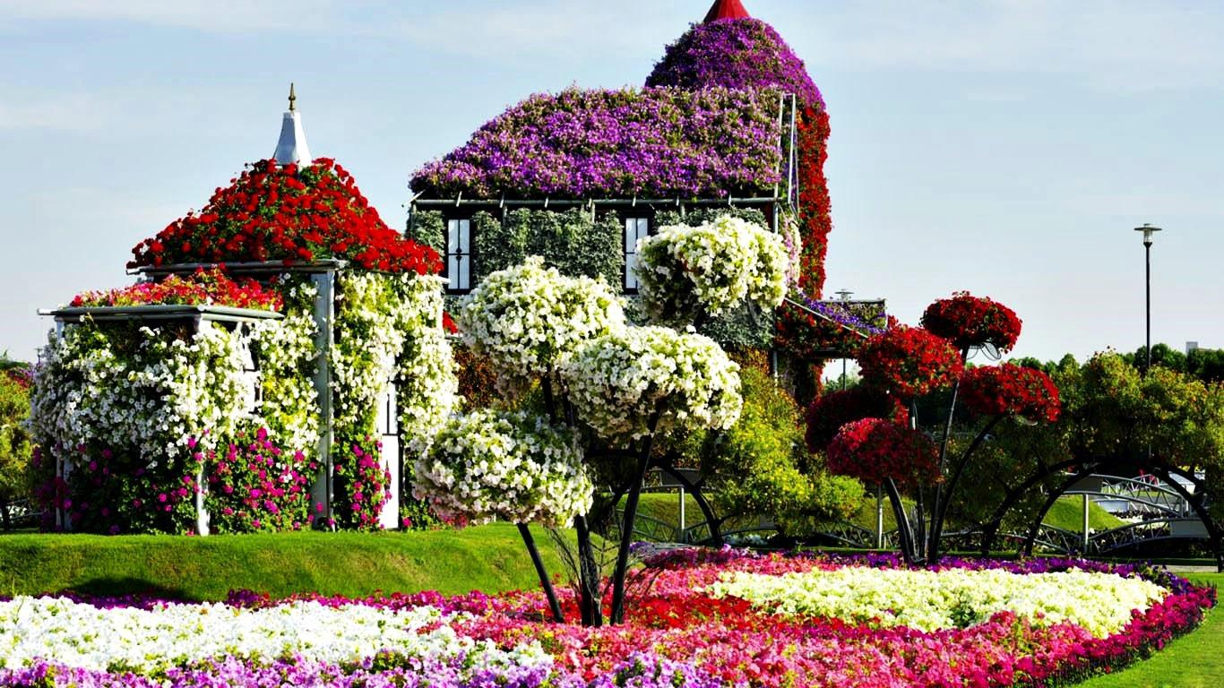 من داخل حديقة الزهور في دبي