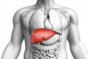 اعراض مرض الکبد وکیفیه ألاحتراس منها