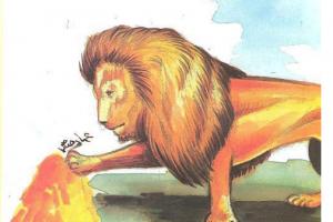 قصة مثيرة من يوميات نعيمان في حدائق الحيوان