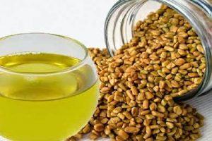 اضرار الحلبة وفوائدها وقيمتها الغذائية واهم استعمالاتها