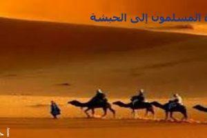 قصص رسول الله محمد صلى الله عليه وسلم| أحداث المسلمين في هجرة الحبشة الجزء الرابع