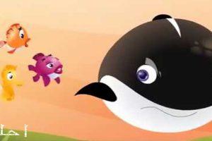 قصص عالمية قديمة للأطفال…قصة الحوت المغرور والسمكة الذكية
