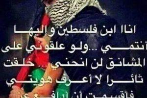 كلمات عن فلسطين الحبيبة ارض الزيتون واشهر الاقوال والحكم التي قيلت عنها