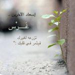 كلمات صباحيه تدعو للتفاؤل والرضا وتبعث الأمل والسعادة في النفس