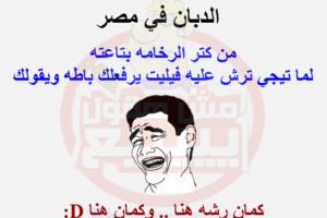نكت مصرية تموت من الضحك متنوعة و جامدة جداً ضحك السنين
