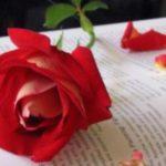 شعر عشق وغزل منتهي الرومانسية والرقة والروعه احلي قصائد المتنبي