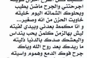اجمل اشعار عراقيه منوعه وجميله