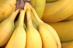 فوائد الموز لعلاج أمراض الجهاز الهضمي وعلاج الربو والاكتئاب وعناصره الغذائية