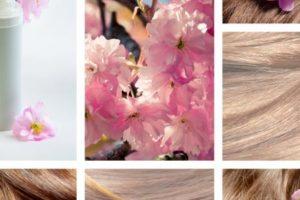 وصفات لتطويل الشعر سريعة ومجربة 100 % ونصائح مهمة للعناية بالشعر وإطالته