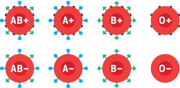 معلومات حول فصائل الدم