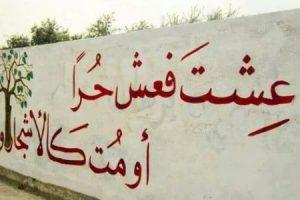 الحرية كلمات واشعار رائعة عن الحرية واهميتها ودورها في حياة الانسان والمجتمع