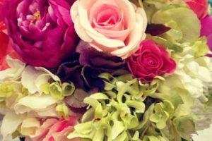 اسماء الورود وانواعها اشهر الازهار والورود التي تتمتع بشكل جميل ورائحة جذابة