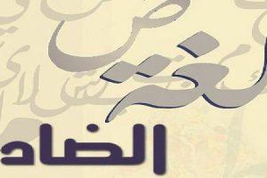 أهمية اللغة العربية ومميزاتها وأجمل ما قيل في حقها