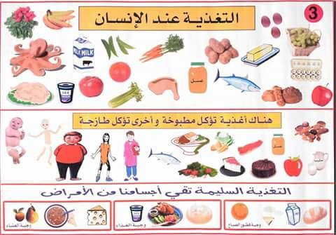 التغذية عند الانسان