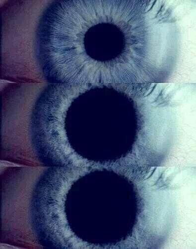 حدقة العين