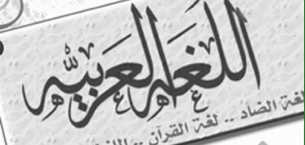 أهمية اللغة العربية.. ومكانتها بين اللغات الأخرى