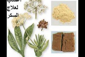 علاج السكر بالاعشاب المختلفة وانواعها
