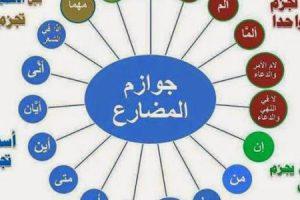 ادوات الجزم في اللغة العربية وإستخداماتها