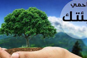 كيف نحافظ على البيئة ونطورها ونحميها من التلوث