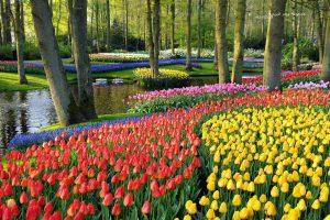 موضوع تعبير عن الربيع واهميته ومظاهر جماله وتأثيره علي البيئة