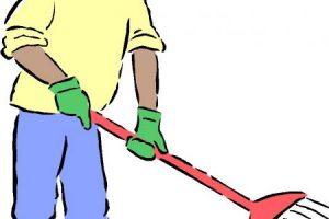 تعبير عن النظافة.. أهميتها وكيفية تحقيقها