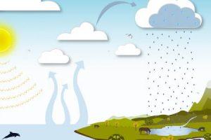 دورة الماء في الطبيعة ومراحلها