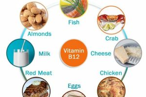 فيتامين b12 واهميته الكبيره للاعضاء الحيوية في جسم الانسان