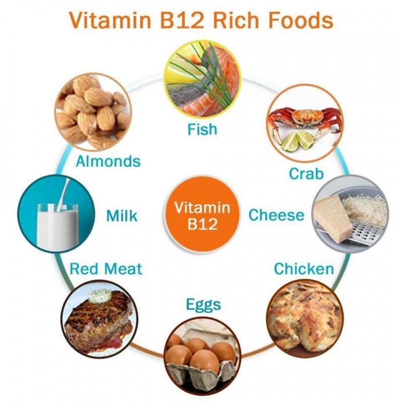 فيتامين b12 واهميته
