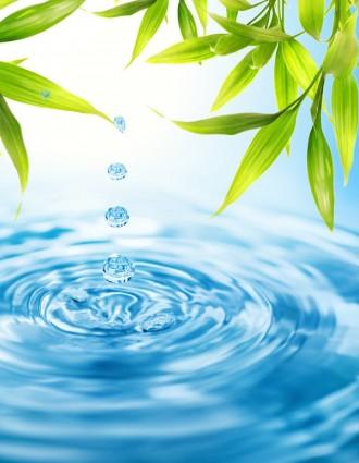 برزنتيشن عن الماء واهميته