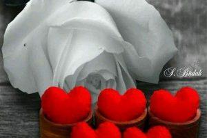 قصص عشق قصيرة معبرة رائعه وفي غاية الرومانسية