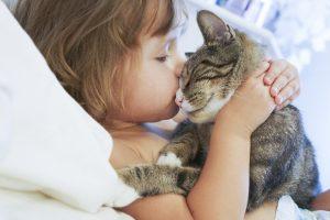 قصة قصيرة للتعبير عن الرفق بالحيوان قصة ليلي والقطة