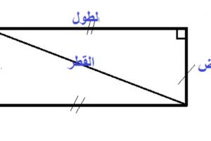 محيط المستطيل.. طريقة حسابه وبعض الأمثلة عليه