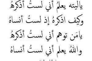 اجمل اشعار العرب شعر عربي قديم وفصيح