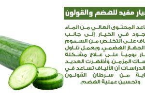 معلومات طبية وصحية حول الطعام والتعرض لاشعة الشمس