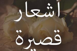 قصائد شعر قصيرة ومتنوعة اقوي 10 قصائد عربية رائعة